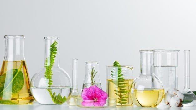 Plantas Cristaleria Laboratorio Concepto Investigaciones Quimicas Productos Medicamentos Cuidado Piel 93675 87412